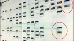 機体ツリー変更案の右端にはモザイクが[デジハリ2014年卒業制作展特別講演][エースコンバット インフィニティ]