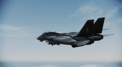 F-14 ミッキーモデル[エースコンバット インフィニティ]