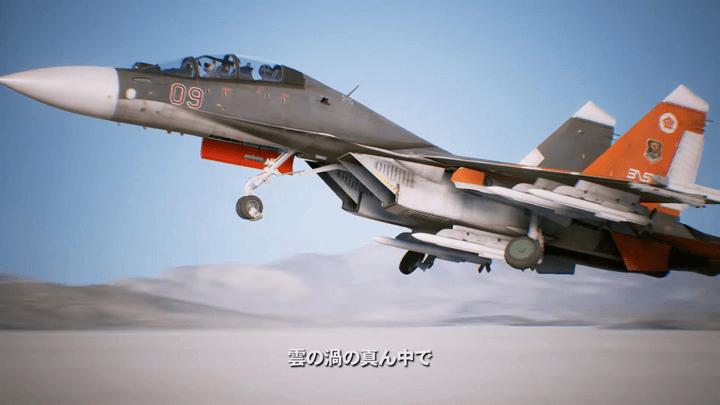 後席にロボが乗るSu-30[エースコンバット7]
